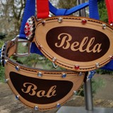 Custom Bronc Halter ~ Personalized! ~ Makes a great Gift or Award!